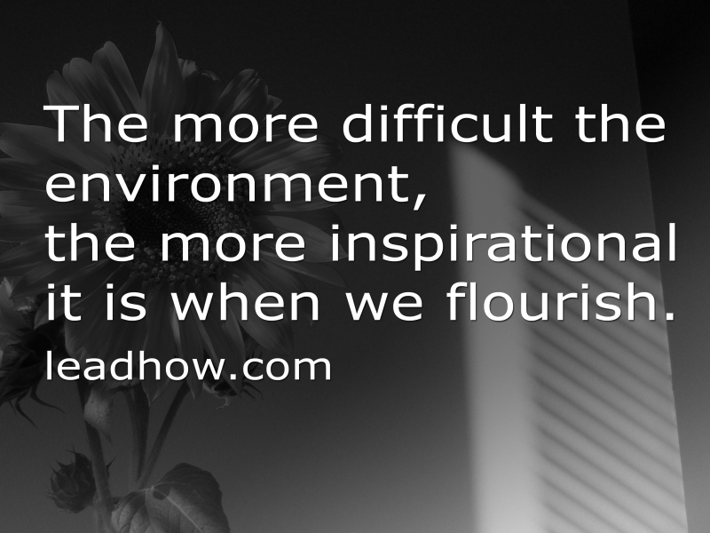 Flourishing in Our Environment